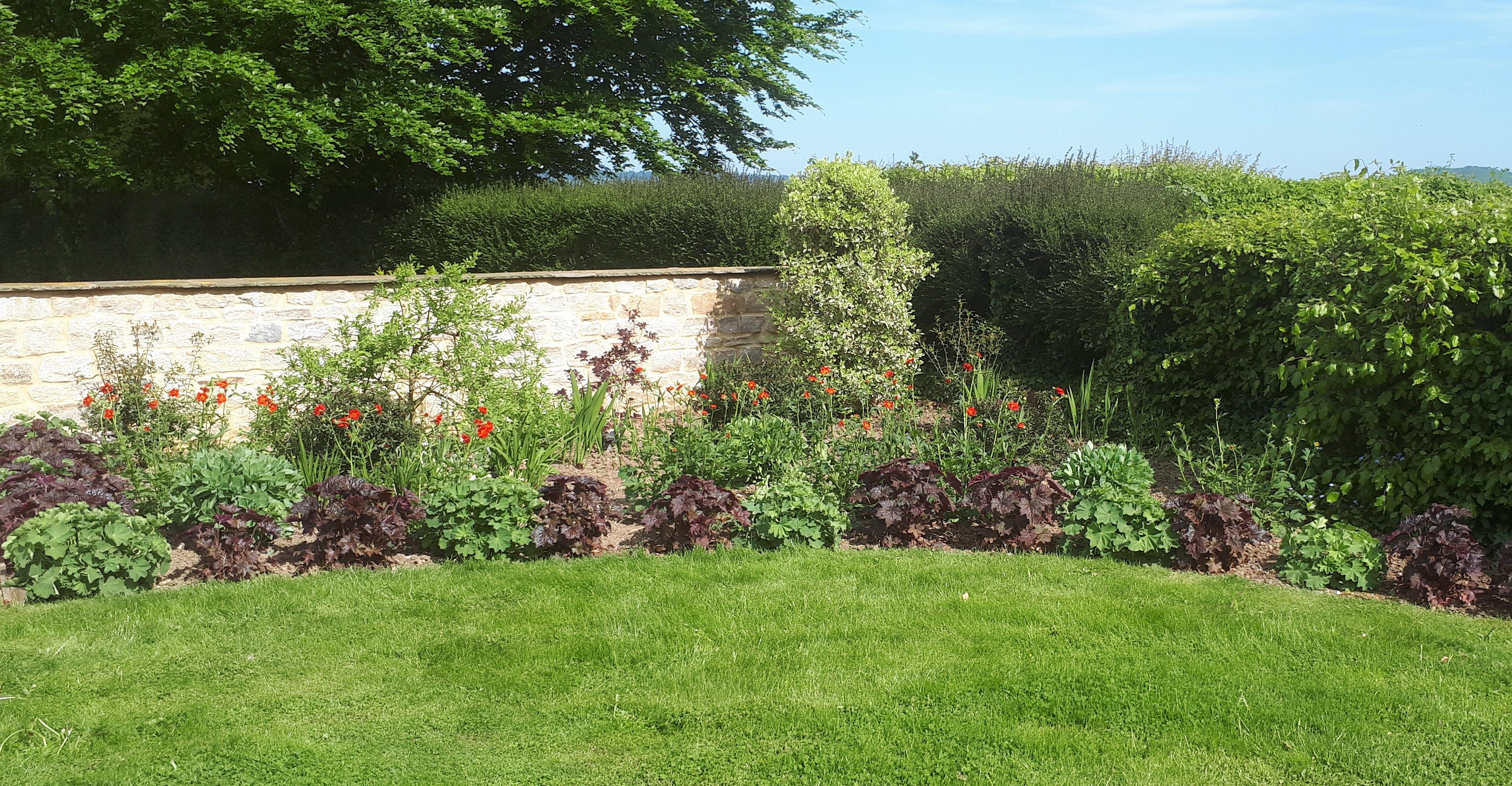 Redesign of large country garden in Gillingham. Dorset